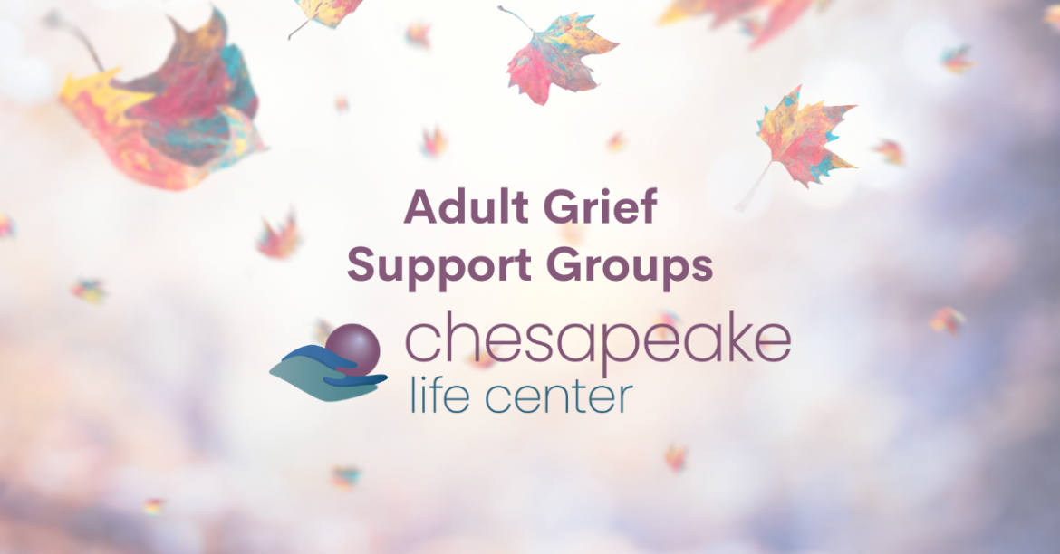 Adult Grief Support Groups for the Fall